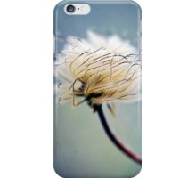 Beauty in the Smallest of Things iPhone Case/Skin