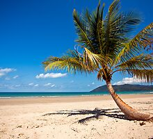 Tropical days by Snapsgoodpics
