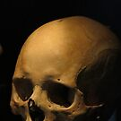Skull for Halloween by Dawn B Davies-McIninch