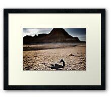 Scorpions everywhere. Framed Print