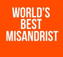 Worlds Best Misandrist by mralan
