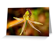 Dragon Orchid Greeting Card