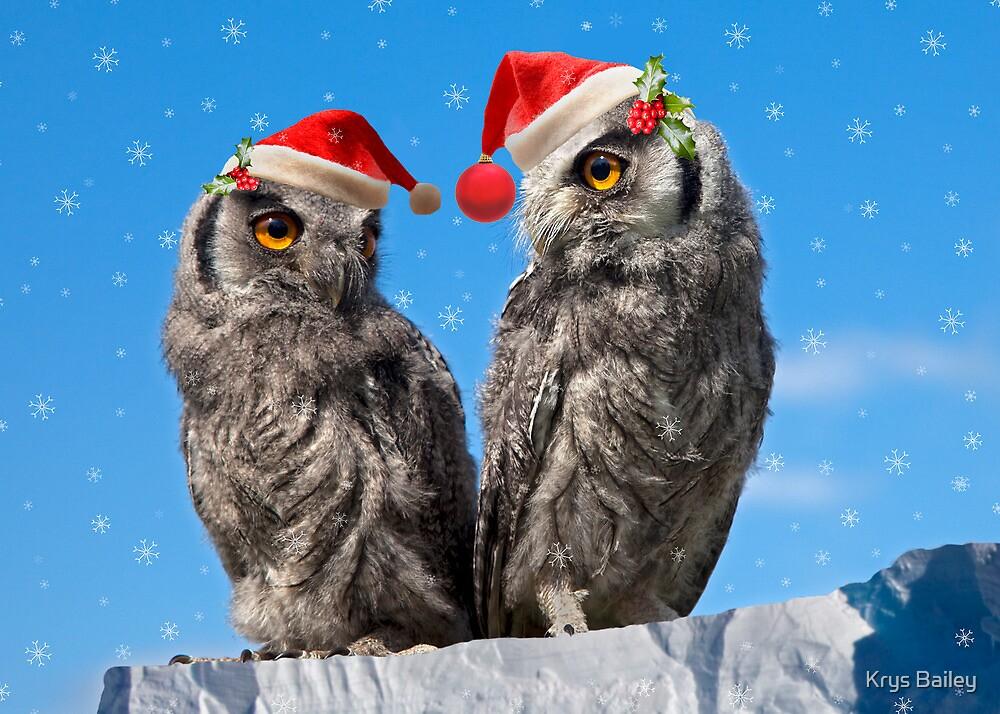 Twins' Christmas by Krys Bailey