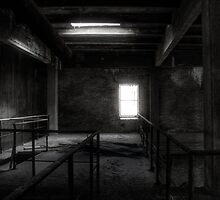 28.9.2013: From Abandoned Factory by Petri Volanen