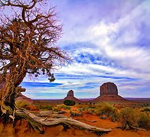 Monument Valley tree View by Gianni Cicalese