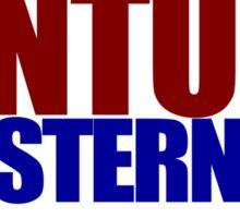 Ventura Stern 2016 Sticker