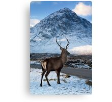 Magestic Wild Stag with Mountain Backdrop Canvas Print
