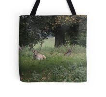 Two Stags (Dinefwr Deer Park) Tote Bag