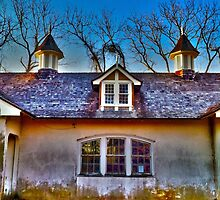 Glitter That Was Once Gold - Sagtikos Manor by Kevin Durst