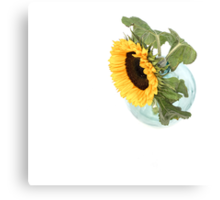 Sunflower in a Vase.... Canvas Print