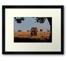 Stack of Bales / Gorilla Sandwich Framed Print