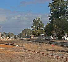 Hotham valley railway (pinjarra) by Elliot62