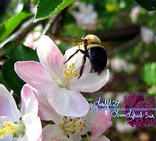 bee-utiful spring by LoreLeft27