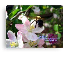 bee-utiful spring Canvas Print