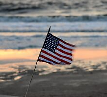 From Sea to Shining Sea-American Pride by Venice Anderson