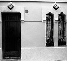 Windows and Door by James2001