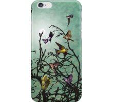 Beautiful Birds  iPhone Case/Skin