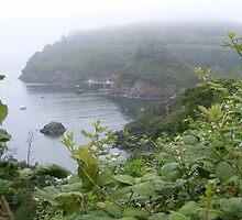 Misty Harbor  by nightangeljdr