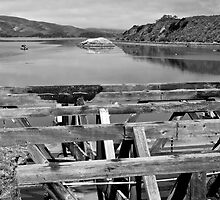 Marshall, Tomales Bay by Scott Johnson