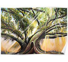 Hawaiian Light Tree - Poster Poster