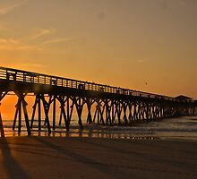 Myrtle Beach by Nancy Rohrig