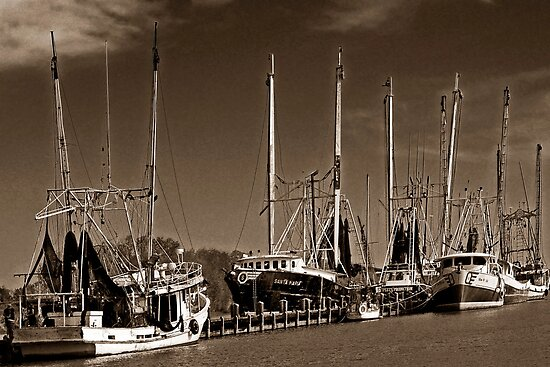 Cajun Shrimpers by cclaude