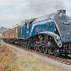 Sir Nigel Gresley by Kit347