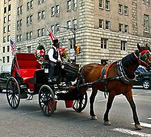 New York City Carriage by dhyman