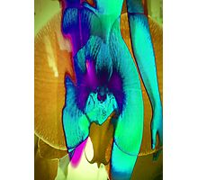 6124vb Orchid Goddess Photographic Print