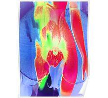 6124vbi Orchid Goddess Poster