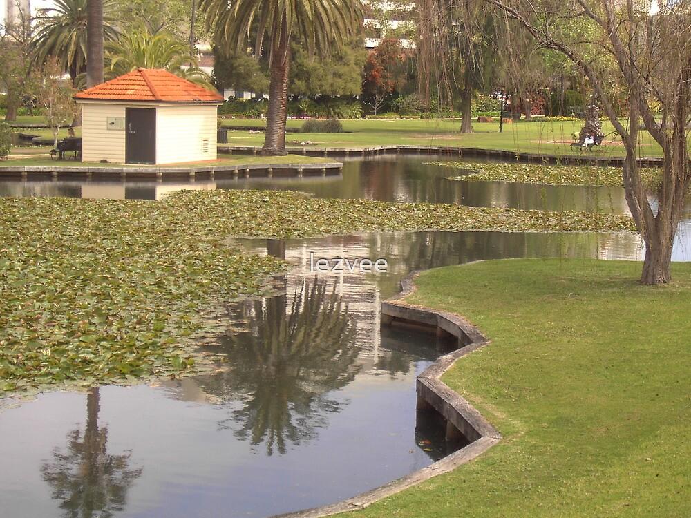 Garden Reflections by lezvee
