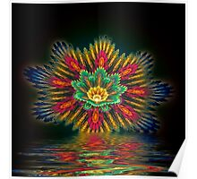 Star Flower Reflections Poster