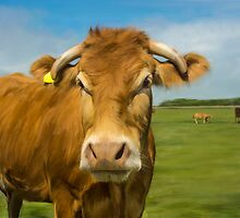 Oil Painted Limousin Cow by Moonlake