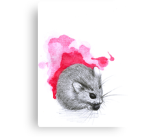 Red Hamster Canvas Print