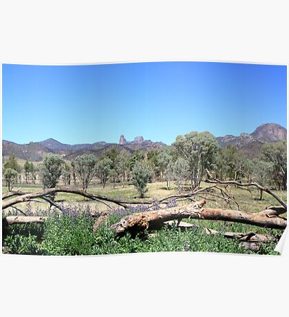 Warrumbungles from Belougery flats Poster