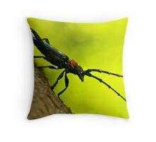 long-horned beetle (new) Throw Pillow