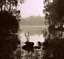 Foggy Morning Silhouette By Lorraine McCarthy by Lozzar Landscape