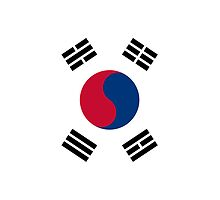 Iphone Case - Flag of South Korea I by Mark Podger