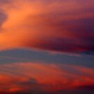Colorful Sky by Vonnie Murfin