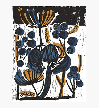 Natural Form Relief Print Photographic Print