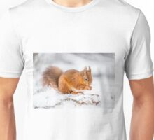 Red Squirrel searching for food Unisex T-Shirt