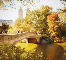 Autumn - Central Park - Bow Bridge - New York City by Vivienne Gucwa