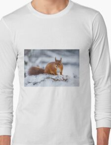 Red Squirrel in Winter Long Sleeve T-Shirt