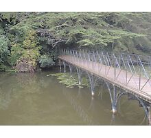 Peaceful Bridge (Blenheim Grounds) Photographic Print
