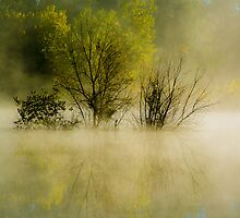 Misty Morning Reflections by Photopa