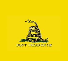 Smartphone Case - Gadsden (Tea Party) Flag II by Mark Podger