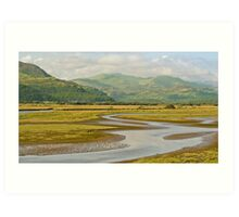 Estuary Run Art Print