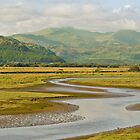 Estuary Run by Deb Maidment
