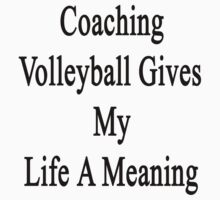 Coaching Volleyball Gives My Life A Meaning  by supernova23