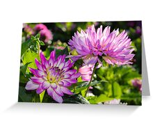 Violet Flowers Greeting Card